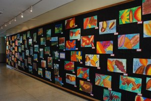 Middle School Art Display