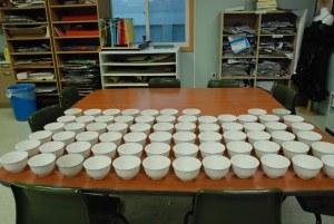 Rice Bowls