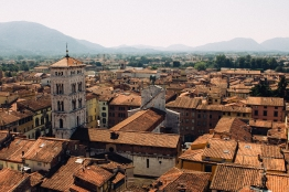 A view of Lucca from the tower.