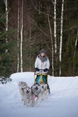 dmitrov-dogsledding-27
